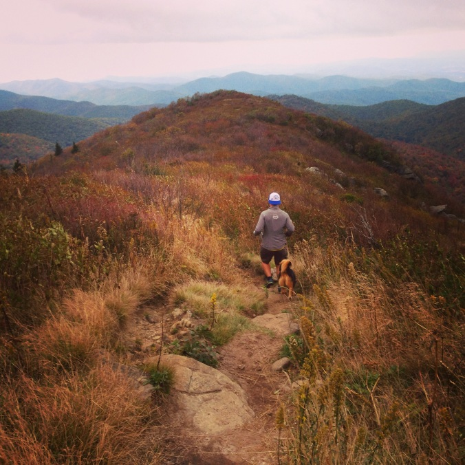 Art Loeb Trail, Tennent mountain near Black Balsam Knob in Shining Rock Wilderness, Trail Running