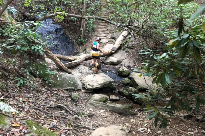 Sulphur Springs Trail, Paris Mountain State Park, Greenville, SC