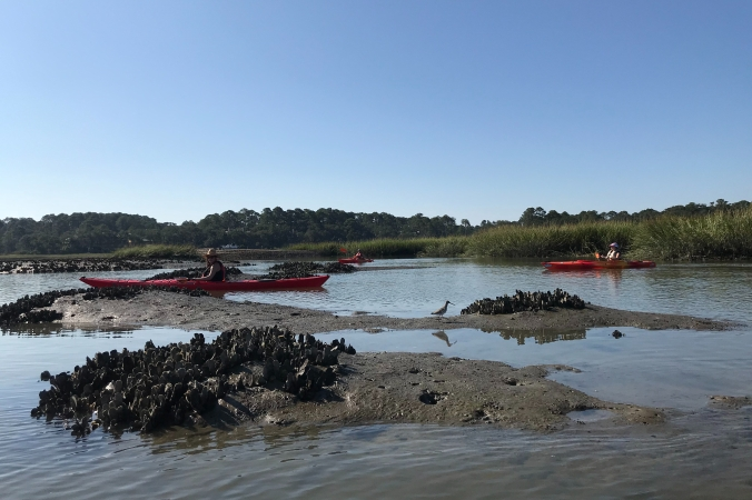 Kayaking Low tide on Broad Creek Hilton Head Island